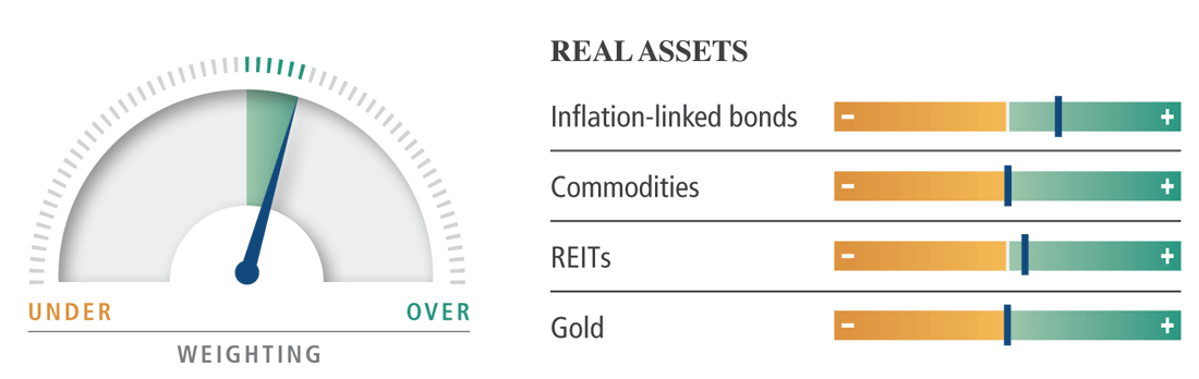 Asset Allocation Outlook Real Assets Dial